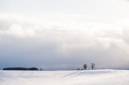 Hokkaido09