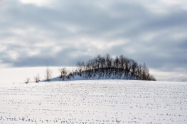 Hokkaido17