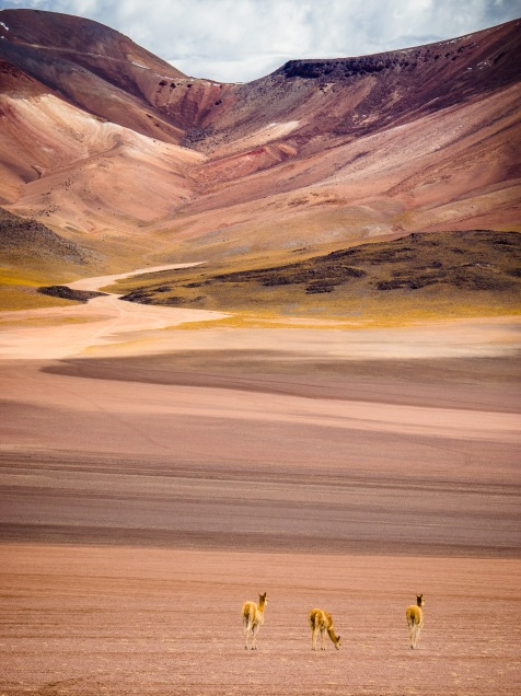 South America15